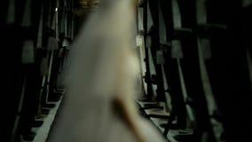 In den Flanken gibt es einen Kognak stock video footage