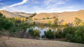 Den flyg- sikten av ett damm i Garin Dry Creek Pioneer Reginal parkerar Arkivbilder