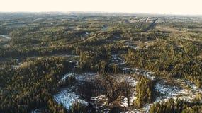 Den flyg- sikten av gammal snö för skogen för asfaltvägen smälter på våren arkivfoto