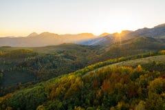 Den flyg- sikten av höstskogen i solnedgång tänder royaltyfri foto