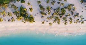 Den flyg- sikten av havsv?gor, paraplyer, gr?splan g?mma i handflatan p? den sandiga stranden p? solnedg?ngen arkivfilmer