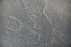 Den flyg- sikten av Nazca fodrar geoglyphs i Peru Arkivbild