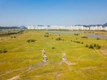 Den flyg- sikten av träväderkvarnen på Incheon ekologiska Sohrae parkerar Arkivbilder