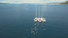 Den flyg- sikten av tre segla yachter förbinds, nära härliga öar Härliga moln i bakgrunden lager videofilmer
