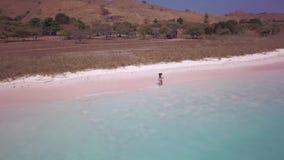Den flyg- sikten av två unga kvinnor som kör längs den rosa sandstranden, från en sida, är buskigt område, från andra varma vågor lager videofilmer
