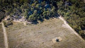 Den flyg- sikten av vingårdar och granit vaggar i Stanthorpe, Australien Royaltyfria Foton
