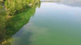 Den flyg- sikten på på kusten av en härlig sjö i en skog och vattnet reflekterade i himlen arkivfilmer