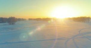 Den flyg- surrsikten av det kalla vinterlandskapet med det arktiska fältet, träd täckte med strålar för solen för frostsnö och mo arkivfilmer