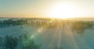 Den flyg- surrsikten av det kalla vinterlandskapet med det arktiska fältet, träd täckte med strålar för solen för frostsnö och mo lager videofilmer