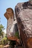Den formade kobran vaggar i sigiriyaen, Sri Lanka Fotografering för Bildbyråer