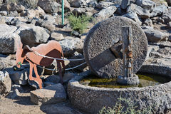 Den forntida delen av den olje- pressen finnas i nationalparken Royaltyfri Bild