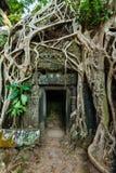Den forntida det stendörren och trädet rotar, templet för Ta Prohm, Angkor, Camb Arkivbild