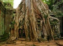den forntida kambodjanen kör tempelet Arkivbild