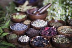 Den forntida kinesiska medicinen Arkivfoton