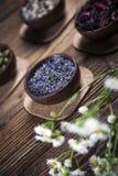 Den forntida kinesiska medicinen Royaltyfri Foto