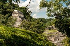 Den forntida Mayan templet i Palenque Arkivfoto