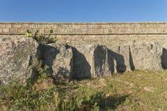 Den forntida stentegelstenväggen med vaggar, gräs och kaktuns Royaltyfria Bilder