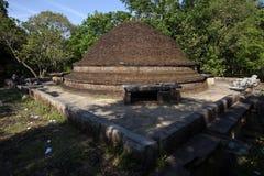 Den forntida tegelstenstupaen på Lahugala Magul Mahavihara nära Pottuvil på ostkusten av Sri Lanka arkivfoton