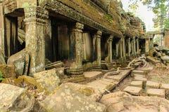 Den forntida templet fördärvar Angkor Wat, Cambodja - tempel av angkoren Royaltyfri Foto