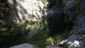 Den 30 fot pölen på Lynn Canyon arkivfilmer