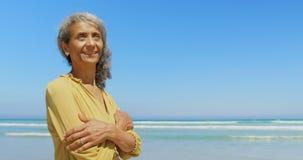 Den främre sikten av den lyckliga aktiva höga afrikansk amerikankvinnan med armar korsade att stå på stranden 4k stock video
