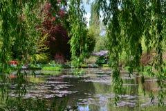 Den Frankrike Giverny Claude Monet trädgården i vår, blommor och sjöhavet steg arkivfoton