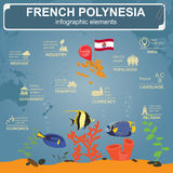 Den franska Polynesien infographicsen, statistiska data, siktar Royaltyfria Bilder