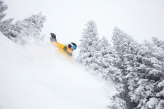 Den Freeride snowboarderen skidar på lutningen Royaltyfri Fotografi