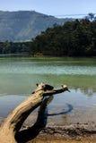 Den fridfulla sjön - Telaga Warna sjö Royaltyfri Fotografi