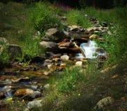 Den fridsamma den bergströmmen/bäcken med en kaskad av vatten som över dråsar, vaggar och att flöda in i förgrunden av bilden Fotografering för Bildbyråer
