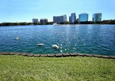 Den fridsamma sjön Eola parkerar i i stadens centrum Orlando, Florida Fotografering för Bildbyråer