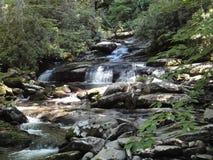 Den fridsamma strömmen som kör över slätt, vaggar med en liten vattenfall som faller långsamt royaltyfri fotografi