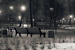 Den fridsamma vinternatten parkerar svart white Royaltyfria Bilder