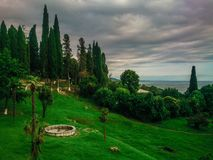 Den frodiga grönskan av Abchazien royaltyfri fotografi