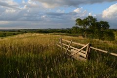 Den frodiga lantgårdporten betar lantliga Nebraska arkivbilder