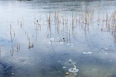 Den fryste sjön, bryter isen arkivbild