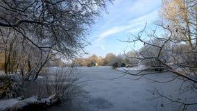 Den fryste vinterplatsen över det Hartley Mauditt dammet till Sts Leonard kyrka, söder besegrar nationalparken, Hampshire, UK royaltyfri bild