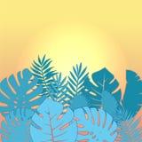 Den fyrkantiga designen för sommarförsäljningsbanret med papper klippte tropisk palmbladbakgrund med text för fritt utrymme fot o vektor illustrationer