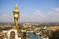 Den gå buddhaen Arkivfoto