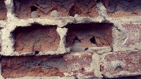 Den gamla bakgrunden för vägg för röd tegelsten arkivfilmer