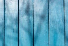 Den gamla blåa wood texturen med naturliga modeller Royaltyfri Bild