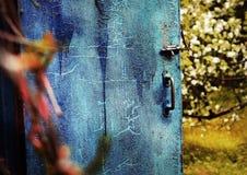 Den gamla dörren med spruckna blått målar på den blomstra äppleträdgården Royaltyfri Foto