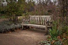 Den gamla ensamma träbänken på parkerar på kall höstafton fotografering för bildbyråer