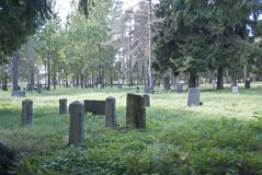 Den gamla finlandssvenska kyrkogården bland träden royaltyfri bild