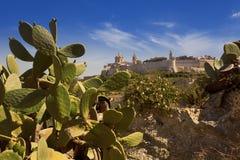 Den gamla huvudstaden av Mdina i Malta Arkivfoton