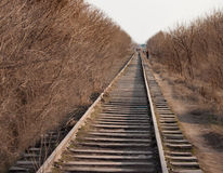 Den gamla järnvägen passerar bland Arkivfoto