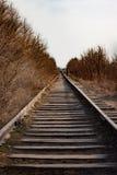Den gamla järnvägen passerar bland Royaltyfri Foto