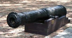 Den gamla kanonen Royaltyfria Bilder