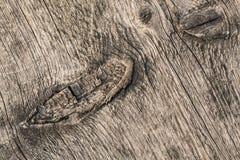 Den gamla knöt spruckna busen texturerade plankan - detalj Royaltyfria Foton