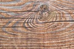 Den gamla knöt spruckna busen texturerade plankan - detalj Arkivbilder